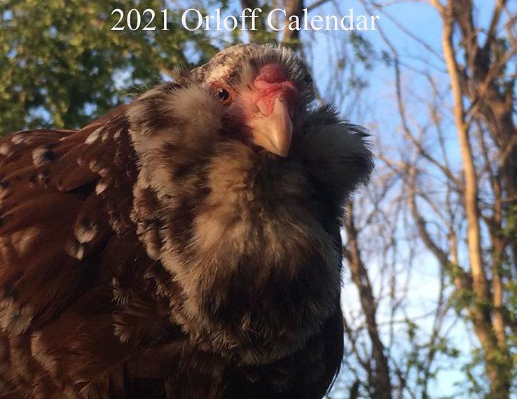 2021 Orloff Calendar.jpg