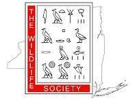NYTWS Logo.jpg