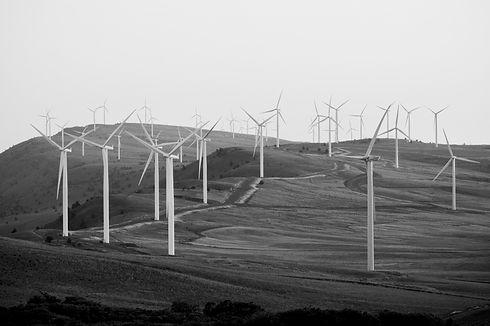 Wind Turbines _edited.jpg