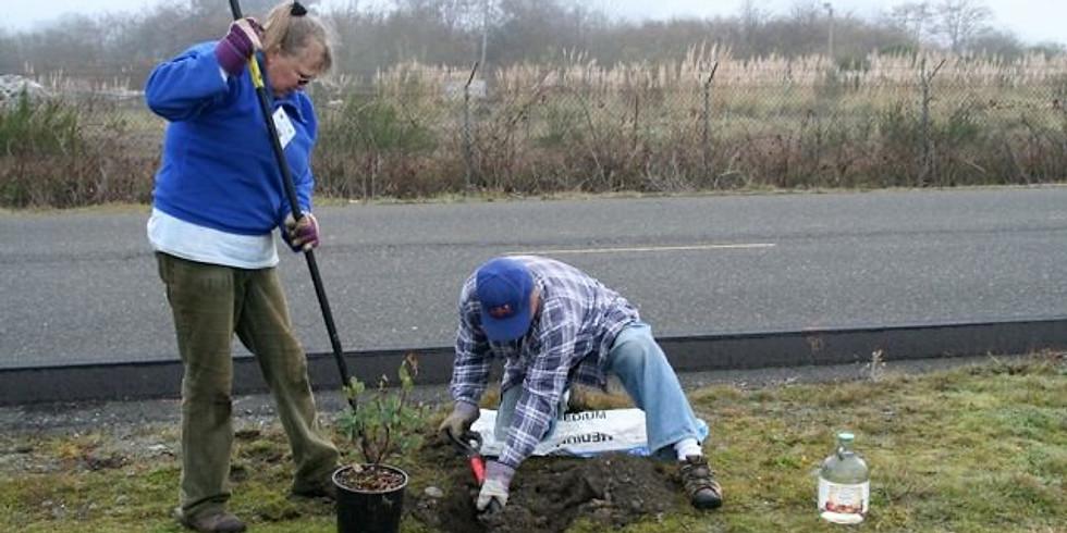 Hikshari' Trail Volunteer Day