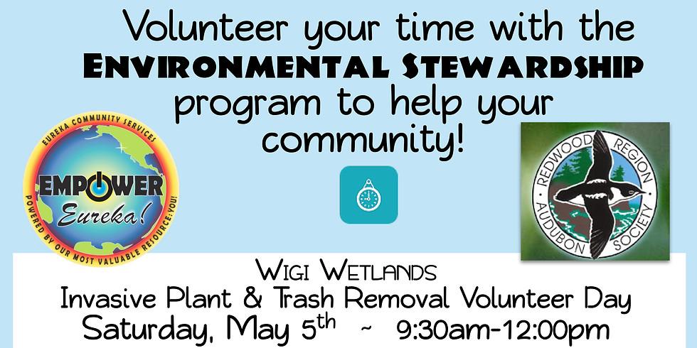 Wigi Wetland Enhancement