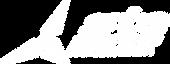 Logo STE (branco).png