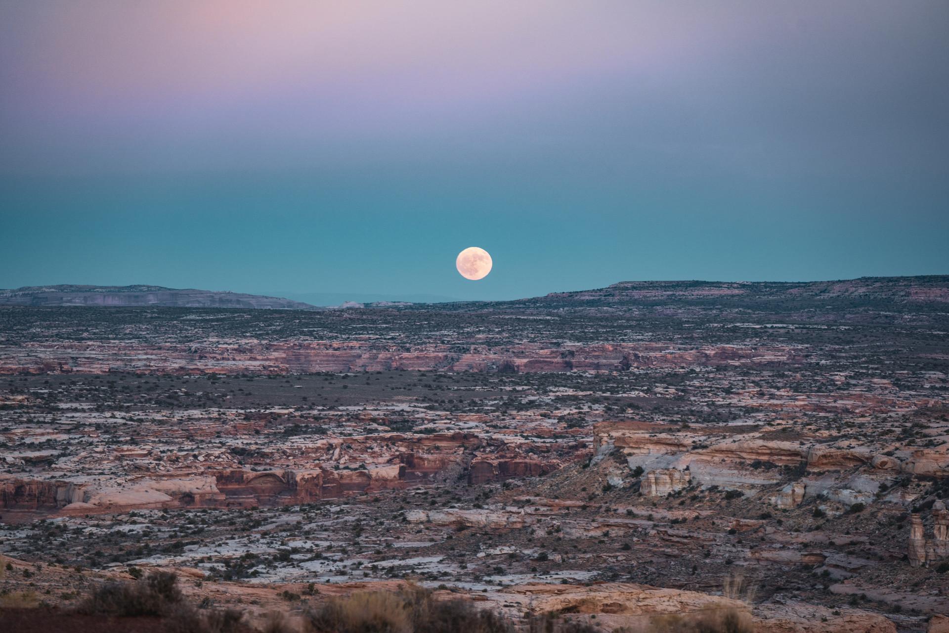 Canyonlands #24