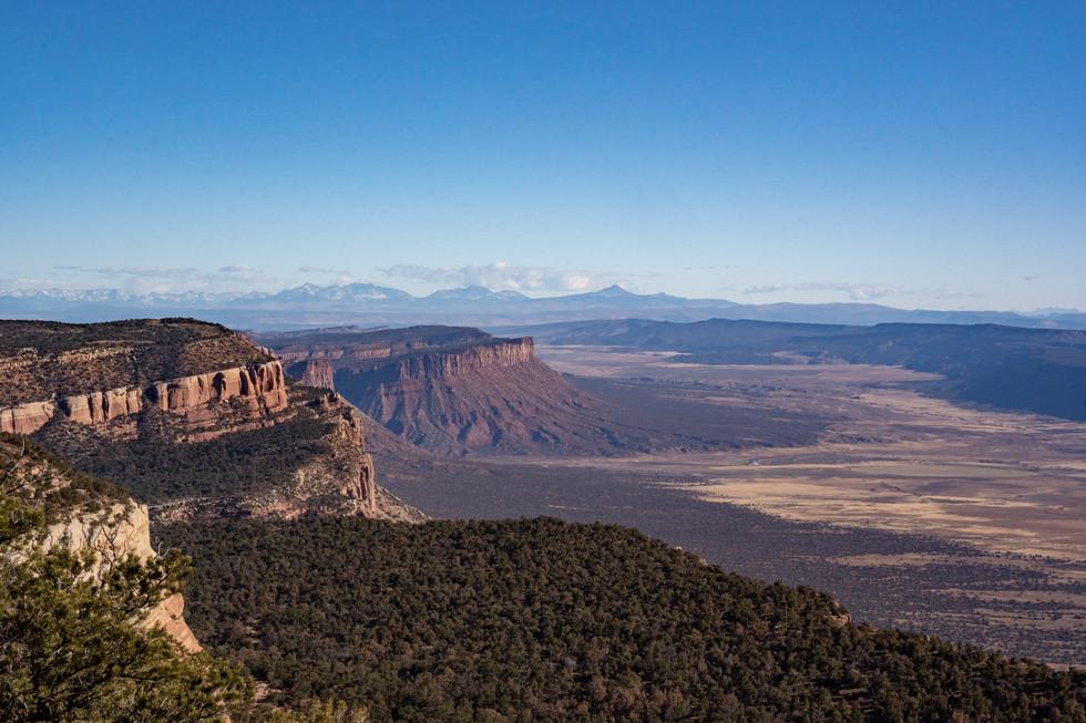 Canyonlands #30