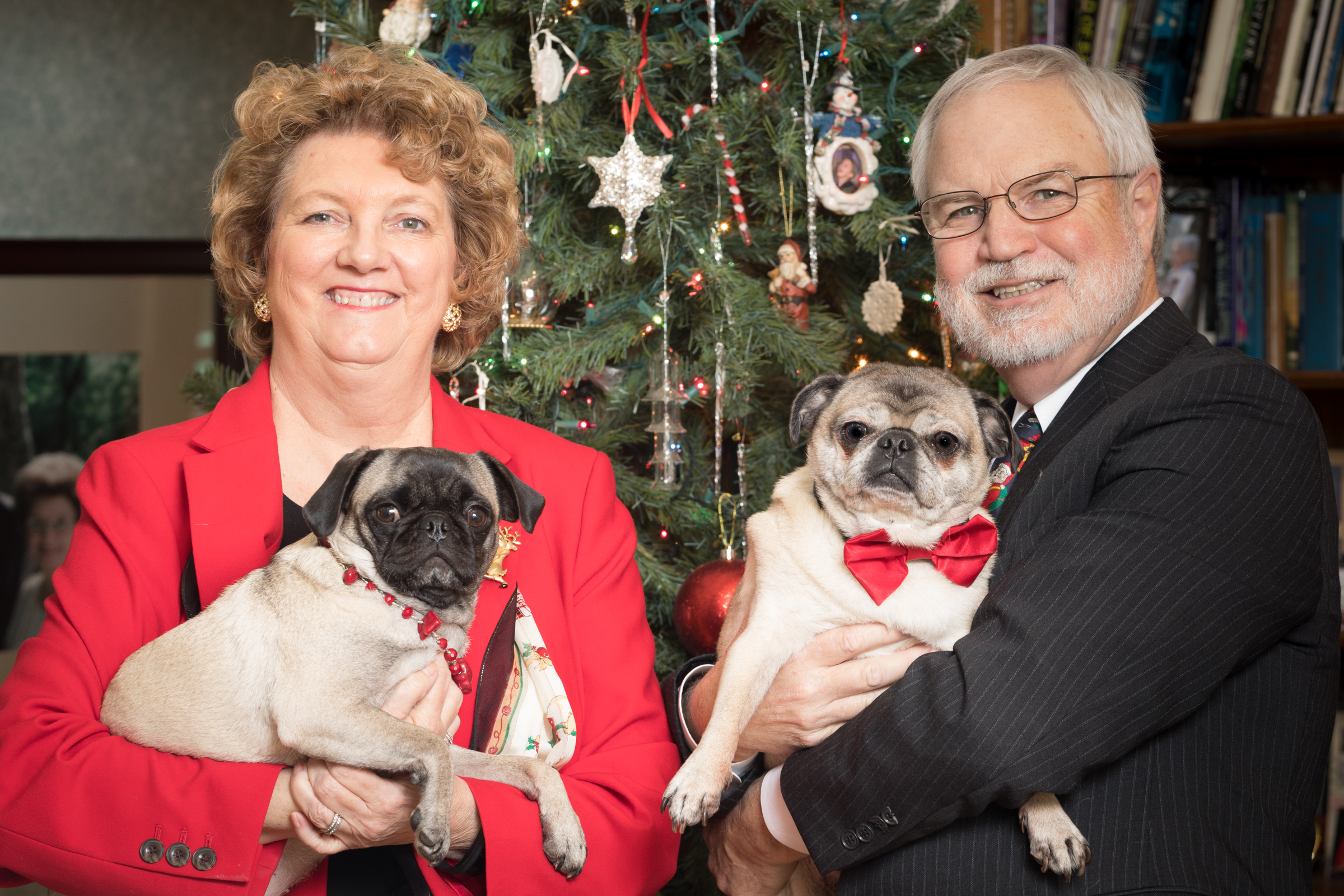 Christmas Portrait 2017 w/our Pugs