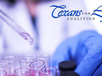 NIH Reverses Ban on Federally Funded Fetal Tissue Research