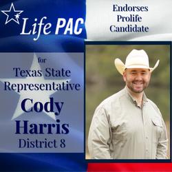 Cody Harri HD 8