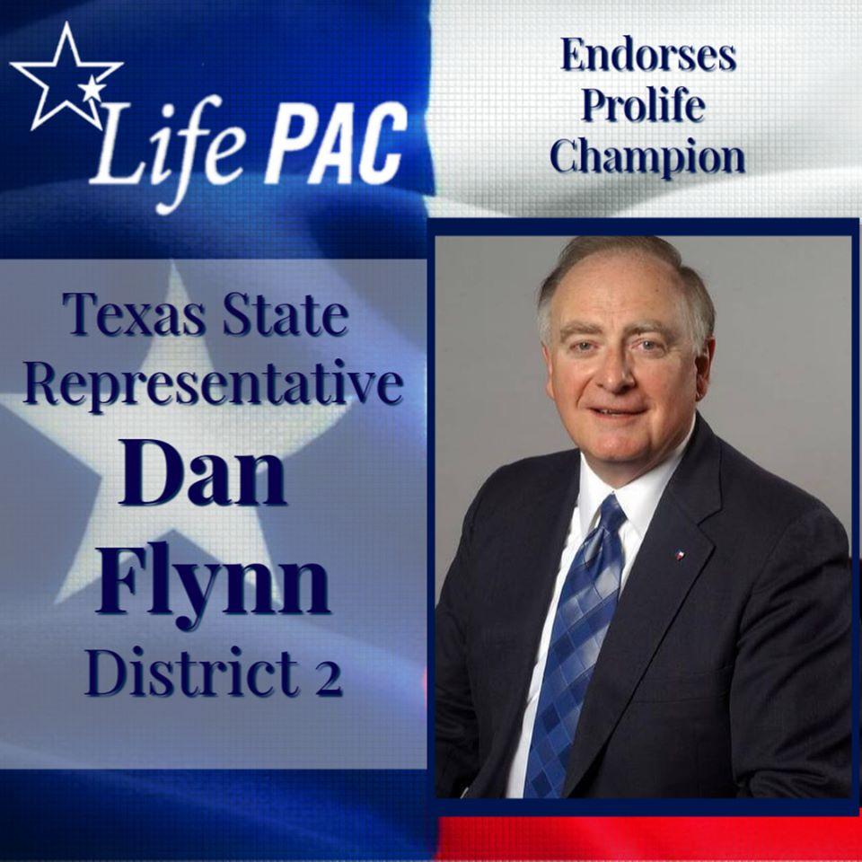 Dan Flynn HD 2
