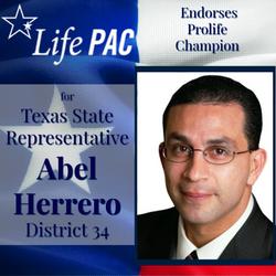 Abel Herrero HD 34