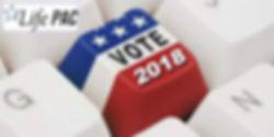 Vote Life 2018.jpg