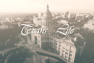 Pro-life Bills to Watch | 87th Texas Legislature