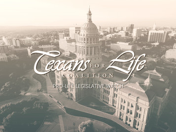 Pro-life Bills to Watch | 87th Texas Legislature
