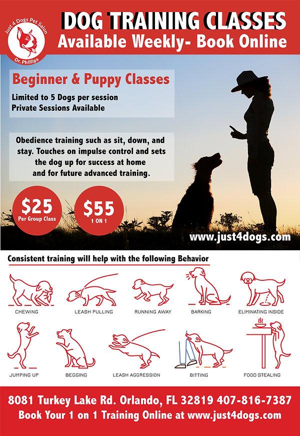 Dog Training Poster In house-01.jpg