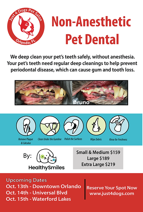Dental Posters -01.png