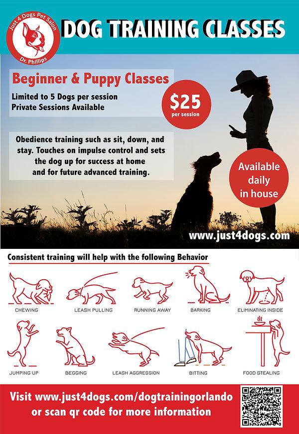 dr phillip Dog Training Poster-01.jpg