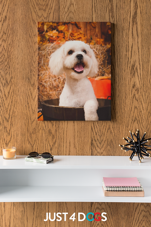 "Canvas Art -Your Dog Here! 16"" x 20"""
