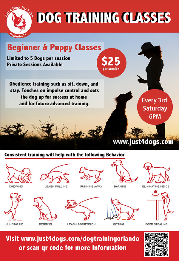 Dog Training Poster every third saturday