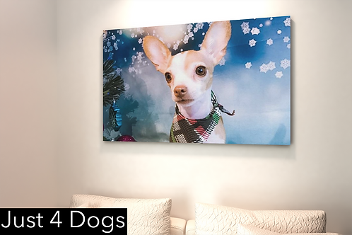 """Canvas Art -Your Dog Here! 36""""x 36"""""""