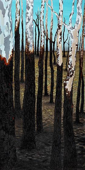 South Coast Burnt Gums
