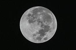 79e951-20180330-bluemoon2.jpg