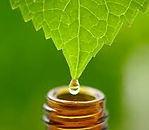 huiles_essentielles_énergétiques_modifié