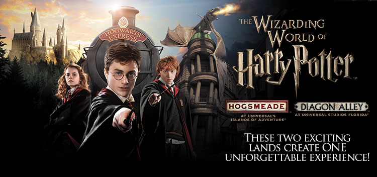 Harry Potter Wand Hogwarts express