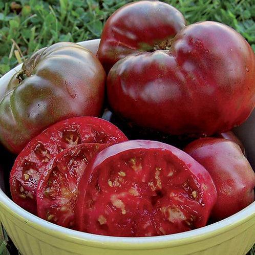 Black Krim Tomato Plant - pre-order of plant for April delivery