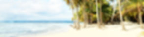 BANNER JAMAICA.jpg