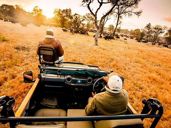Five-Tour-luxury-Travel-africa-do-sul-Sa