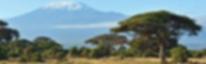 head-tanzania_Prancheta-1.jpg