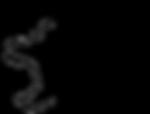Maya Landman's Wolf Logo