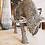 Thumbnail: Sculpture métal nickelée Buffle