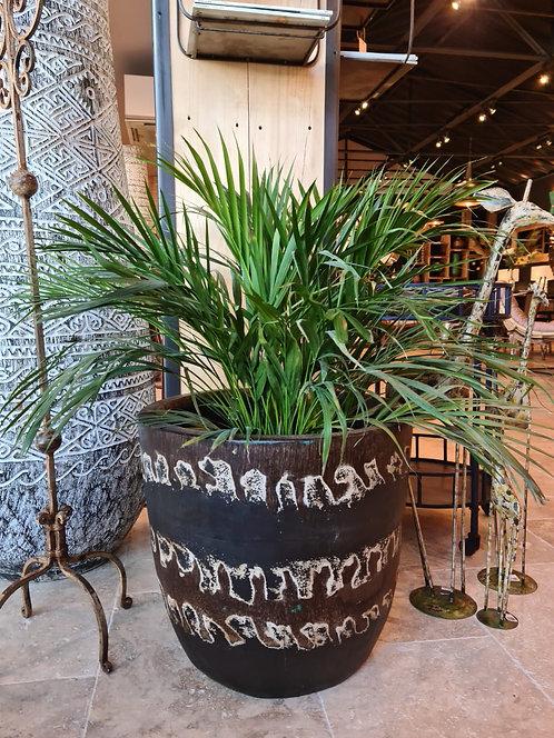 Pot en palmier