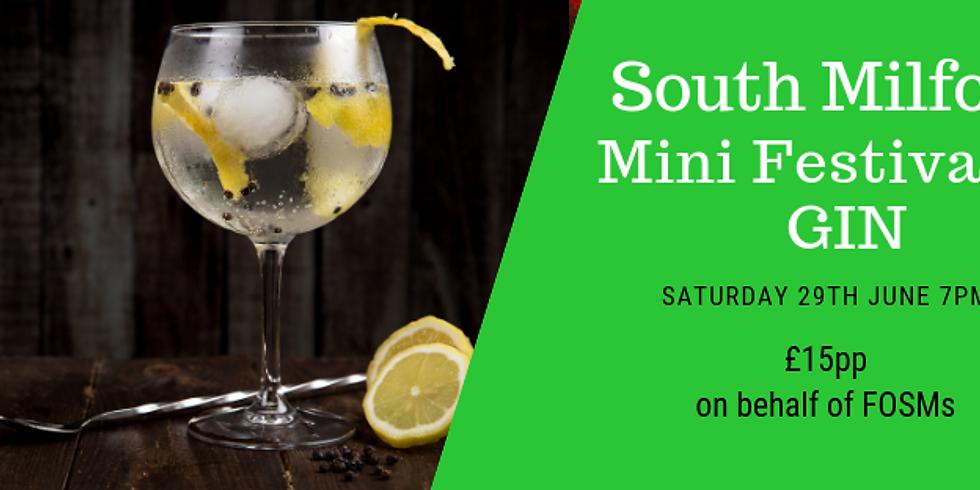 South Milford Mini Festival of GIN