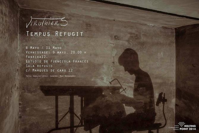 Tempus refugit. Melting Point 2014