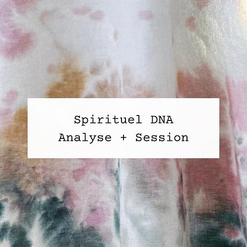 Spirituel DNA Analyse
