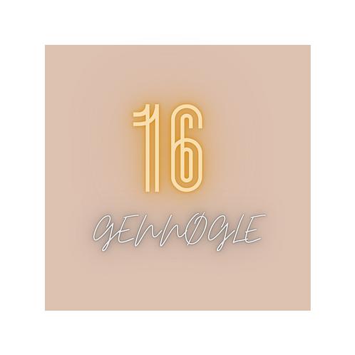 16 GenNøgle - magisk geni (PDF)