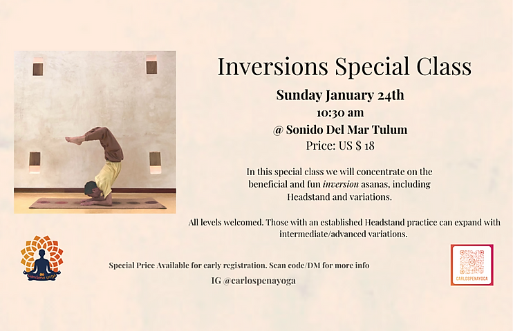 5.5.5x8.5 Inversions Poster.png