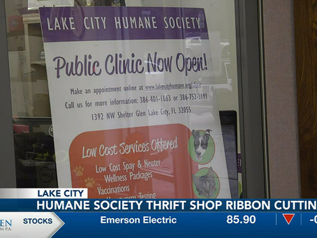 LCHS Opens A Thrift Shop That Will Benefit the Animals