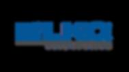 LKQ Logo Frame.png