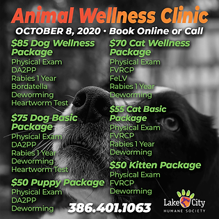 October 2020 Wellness Clinic FB Graphic