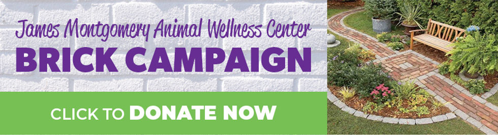 Donate Page - Brick Campaign.jpg