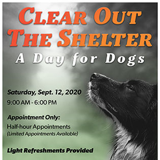 Dogs - Clear out the Shelter - September