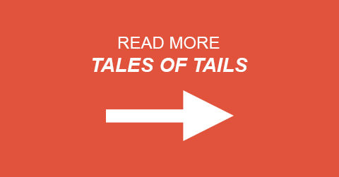 Read More Tales of Tails.jpg
