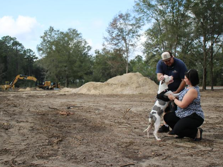 A Walk in the Park: Humane Society Planning for Dog Park Addition