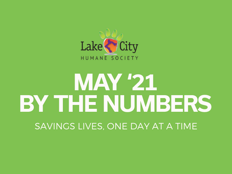 May '21 by the Numbers