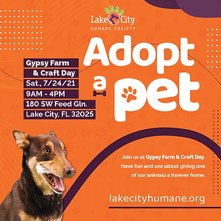 July 2021 - Adoption Event - Social Post - Gypsy Farm & Feed.png