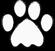 Adopt Icon - White.png