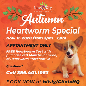 Heartworm Promo - Nov. 2020.png