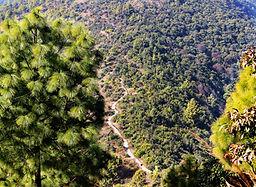Champa Devi Trail above Kathmandu Valley